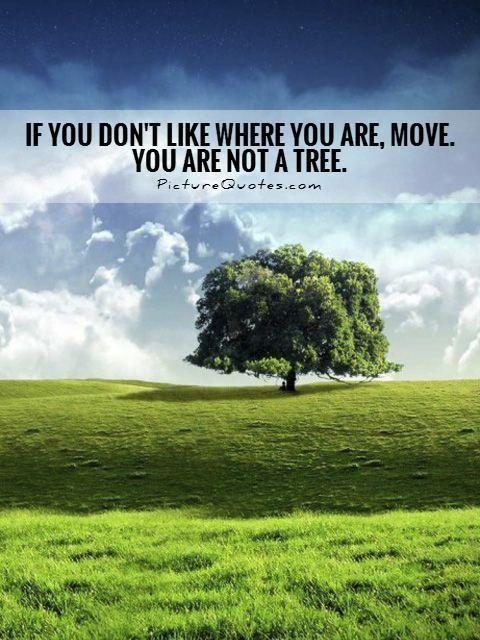 nisi-drvo-pokreni-se